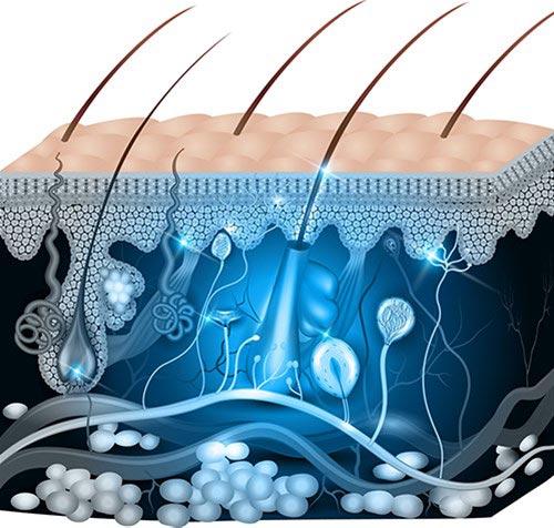 Κυρίτσης - Γενικός Χειρούργος, παθήσεις δέρματος