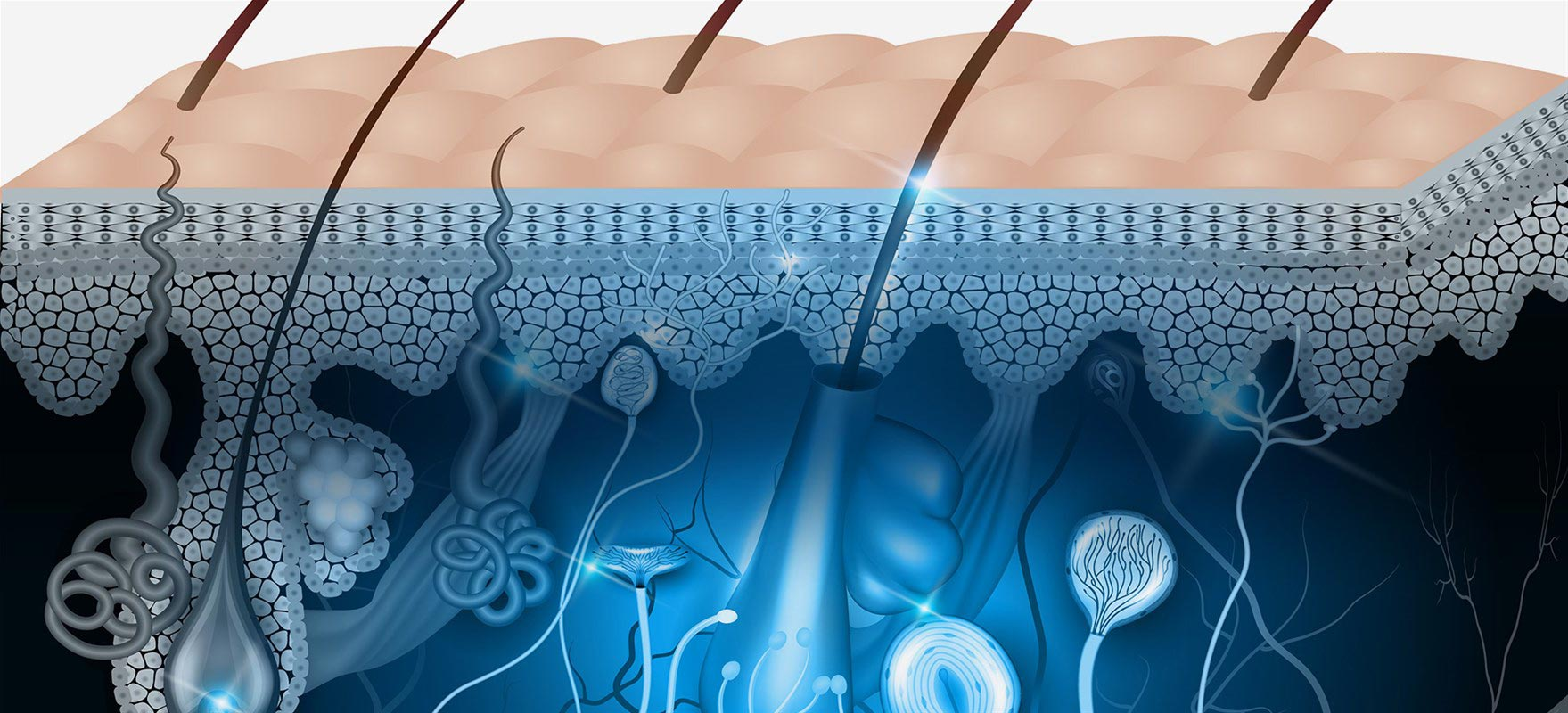 Κυρίτσης , Παθήσεις δέρματος μαλακών μορίων
